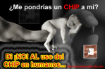 baby_chip