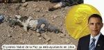EL Nobel ayudando en Libia