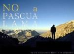 pascualama